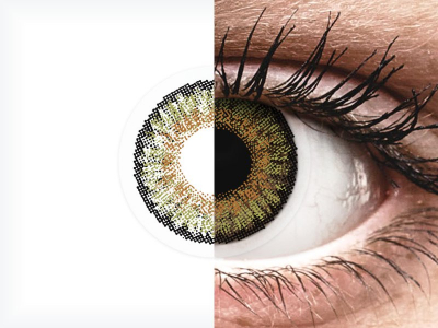 FreshLook One Day Color Pure Hazel - dioptrijske (10 kom leća)
