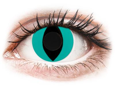 CRAZY LENS - Cat Eye Aqua - jednodnevne leće bez dioptrije (2 kom leća)