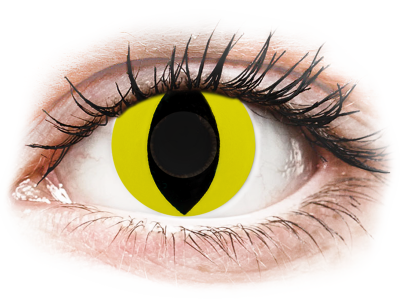 CRAZY LENS - Cat Eye Yellow - jednodnevne leće bez dioptrije (2 kom leća)