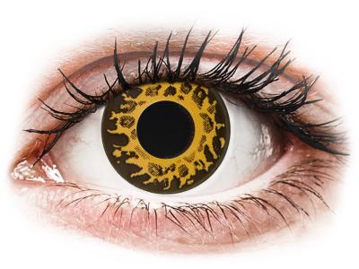 CRAZY LENS - Cheetah - jednodnevne leće bez dioptrije (2 kom leća)